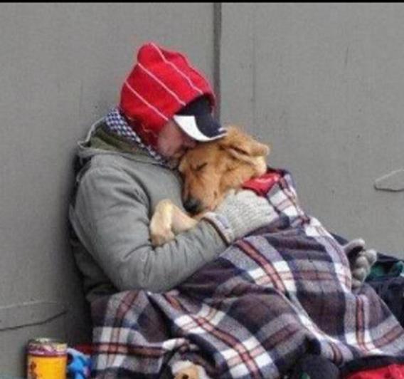 homeless-man-and-dog